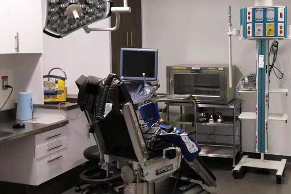 胚胎实验室1