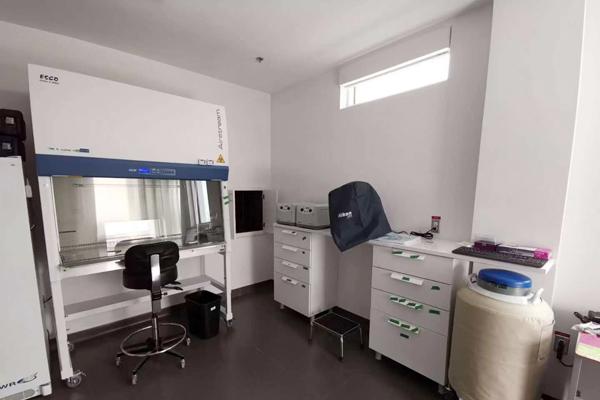 精子储藏室