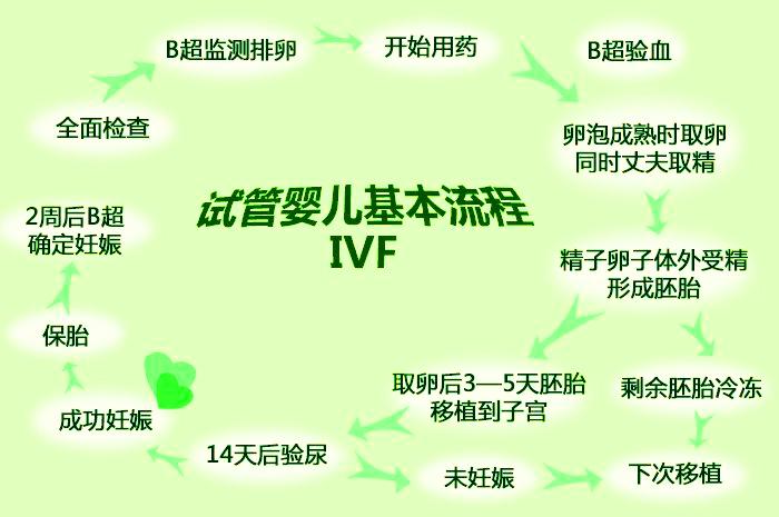 试管婴儿基本流程图IVF